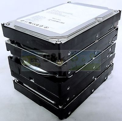 "Lot Of 5 Major Brand 500Gb Desktop Internal Sata Hard Drive 3.5"" Warranty"