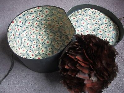 antique vintage hat box with feather hat