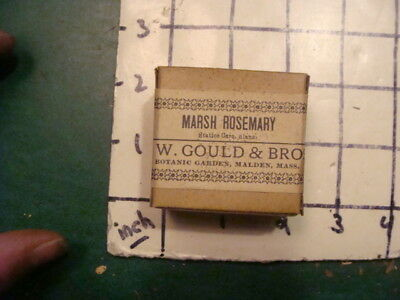 unused old store stock -- S W GOULD & bros -- MARSH ROSEMARY