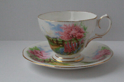 Vintage Queen Anne England  MEADOWSIDE Country Design Tea Cup and Saucer Set