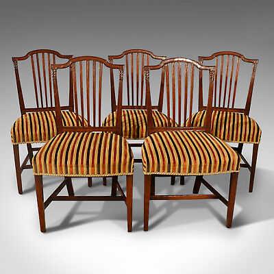 Antique, Dining Chairs, Set of Five, Mahogany, Georgian, Sheraton, English c1800