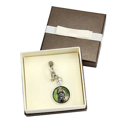 Cane Corso. Keyring with box for dog lovers. Photo jewellery. Handmade UK