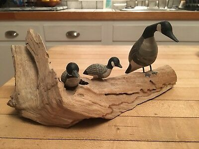 Incredible Vintage Carved Canada Mother Goose & Babies On Driftwood
