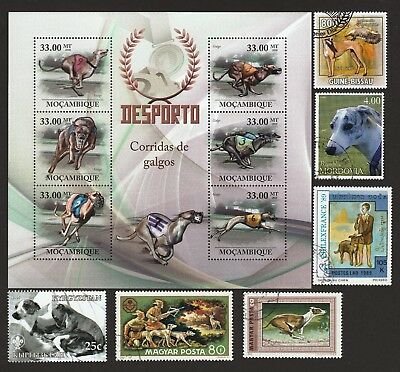 GREYHOUND ** Int'l Dog Postage Stamp Collection ** Unique Gift*