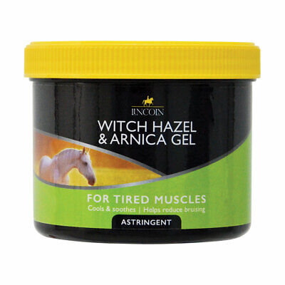 Lincoln Witch Hazel & Arnica - Soothing Muscle Gel for Horses 400g