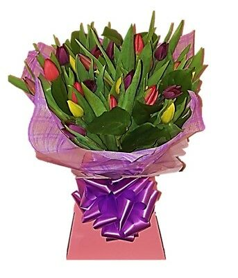 FRESH REAL FLOWERS  Delivered UK Tulip Selection Bouquet Free Flower Delivery