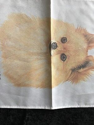 "Robert J May Adorable Blonde Pomeranian Puppy Dog Mini Yard Garden Flag 12""x 16"""