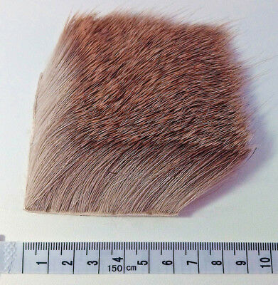 Natural Deer Body Hair Patch, Fly Tying Material