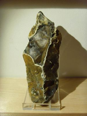 Palaeolithic -  'Acheulian'  point  - 350,000 yrs.