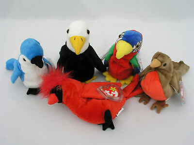 Ty Beanie Babies  (5) Birds - Mac, Rocket, Baldy, Early & Jabber - Excellent