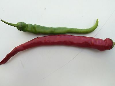 Vegetable Hot Chilli Pepper Cayenne Long Slim 60 Seeds #4236