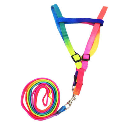 Adjustable Pet Dog Puppy Rainbow Harness Lead Leash Cat Rabbit Kitten Collar V1O