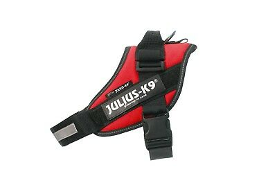 Julius-K9 IDC Powerharness RED Adjustable puppy harness