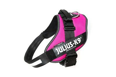 Julius-K9 IDC Powerharness DARK PINK Adjustable puppy harness