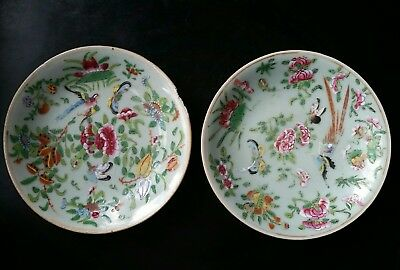 Antique Chinese Wucai Celadon Porcelain Plate By Hand Pair 19th Century 1800s