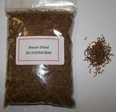 Freeze Dried Bloodworm - Fish / Turtle Food