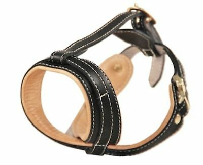 Dean & Tyler The Royal Premium Occlusion Dog Muzzle with Nappa Leather Lining