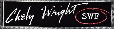 "Chely Wright ""SWF"" RARE Car Bumper Sticker Country Music Decal 3x11"" *NEW*"