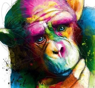 "Colourful chimp wall art printed on canvas 16'' X 16"" solid frame"