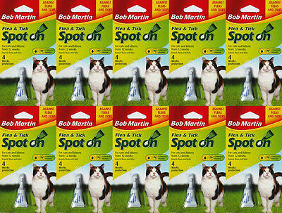 10 PACK BOB MARTIN FLEA and TICK SPOT ON TREATMENT CAT cats kitten kittens