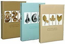 Henzo Back2Nature 10x15 Slip-in per 300 foto colori ass. Cucina (f2h)