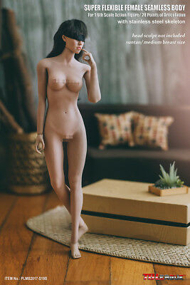 1/6 TBLeague PLMB2017-S19B Phicen Female Seamless Body Medium Bust suntan NIB