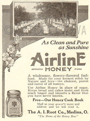 Antique '19 AIRLINE Honey Bee Hive A. I. ROOT Medina OH Ohio Beekeeping Photo Ad