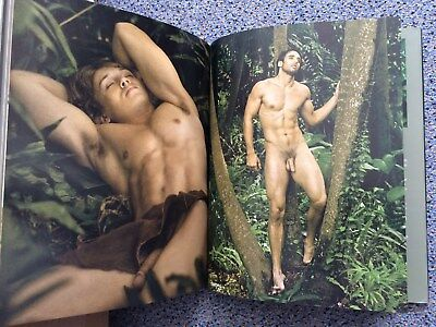 Jungle Fever by David Vance 9780615582481 signiert nude male NEU gay rare NEW