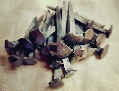 (10) ~ Hand Forged Rose Head Nails