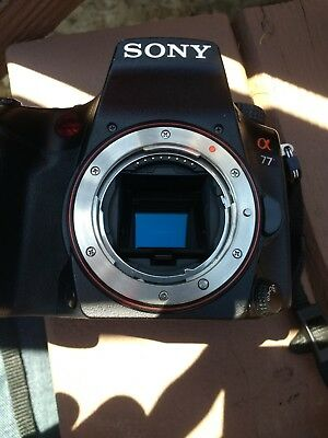 Sony Alpha SLT-A77 24.3MP Digital SLR Camera - Used