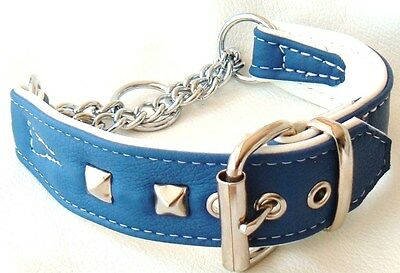 Blue and White leather Martingale dog collar with studs