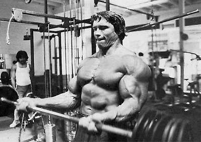 Arnold Schwarzenegger Arnie Body Building Poster - A4 A3 A2 Sizes