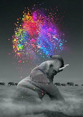 Elephant Squirting Colorful Water Glossy Art Poster - A4 A3 A2 Sizes