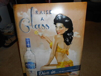 DEEP EDDY Raise a Glass VODKA Tin Sign - Brand New NEAT SIGN! 16 x 20 Austin TX