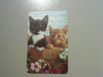 1 Swap/Playing Card - Cute Kittens in Barrel (Blank Back)