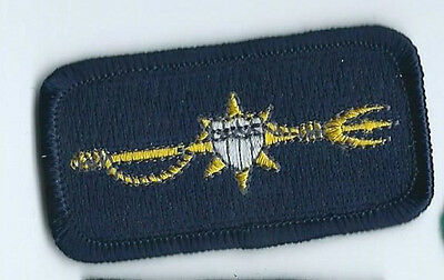 United States Coast Guard USCG Auxiliary patch Marine Safety 1-3/8 X 2-1/2 #2308