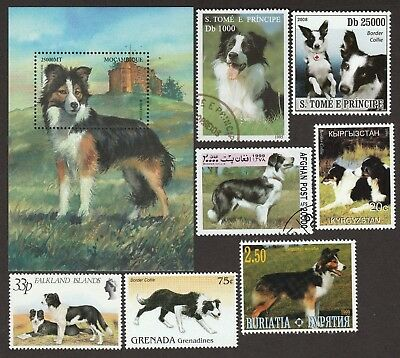 BORDER COLLIE  ** Int'l Dog Postage Stamp Collection**Great Gift Idea **
