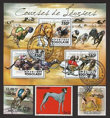 GREYHOUND ** Int'l Dog Postage Stamp Collection**Great Gift Idea **