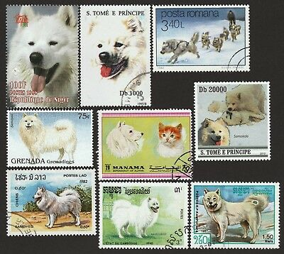 SAMOYED ** Int'l Dog Postage Stamp Collection**Great Gift Idea**