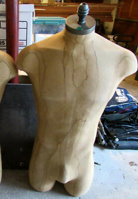 Genuine ABERCROMBIE & FITCH Men's Clothing Store Clothes Mannequin A&F