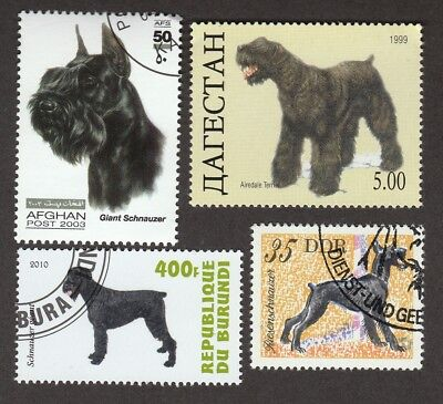 GIANT SCHNAUZER ** Int'l Dog Postage Stamp Collection ** Unique Gift*