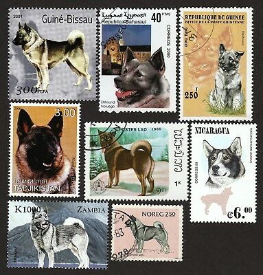 NORWEGIAN ELKHOUND ** Int'l Dog Postage Stamp Collection ** Unique Gift **