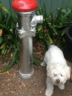 Fire Hydrant - Vintage
