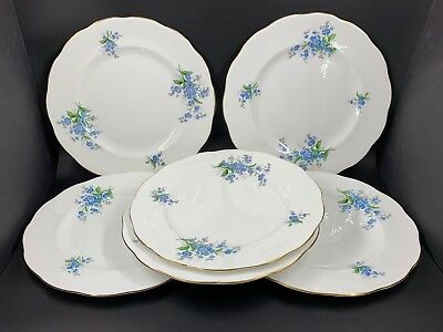 "Royal Albert Forget Me Not 10.25"" Dinner Plates Set Of 6 Bone China England"