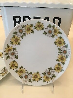 Noritake Marguerite Cook n' Serve 4 Salad Plates