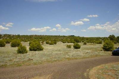 1.26 Acres Up For Auction In Arizona With No Reserve!