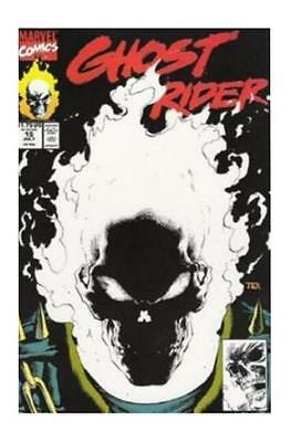 Ghost Rider #15 (Jul 1991, Marvel)