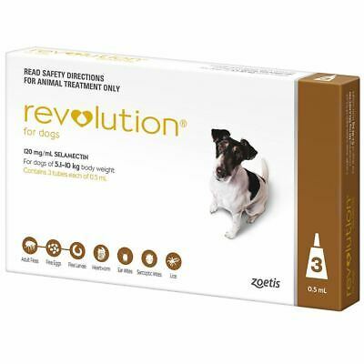 Revolution for Dogs 5.1-10 kg - Brown 3 Pack