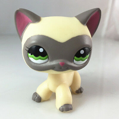 Littlest Pet Shop Grey masked cat LPS #1116 short hair yellow brown kitty toy