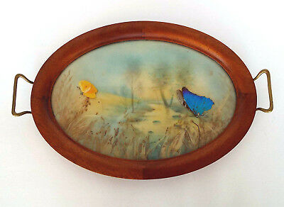 Stunning Art Deco Pressed Floral Butterfly Serving Tray Oval Wood Brass Handles